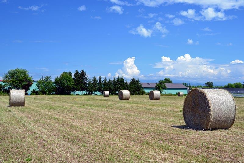 2011_0724nwan 129-80
