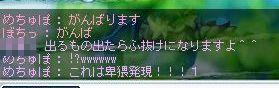 20070925091720.jpg