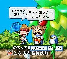 Maple1081.jpg