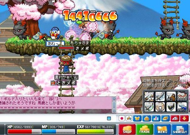 Maple1113.jpg