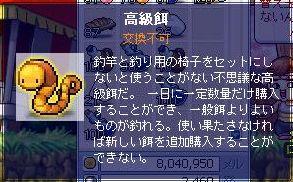 Maple1230.jpg