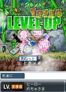 Maple1389.jpg