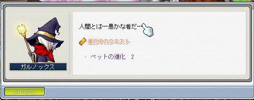 Maple1573.jpg