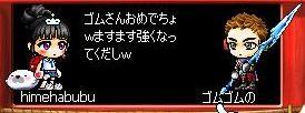 Maple1668.jpg