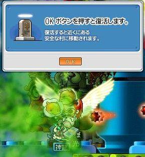 Maple2419.jpg