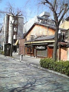 nawateshirakawa_torishin_kari.jpg