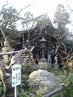 shiba_atago_honden.jpg