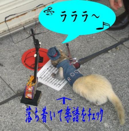 20061113224646.jpg