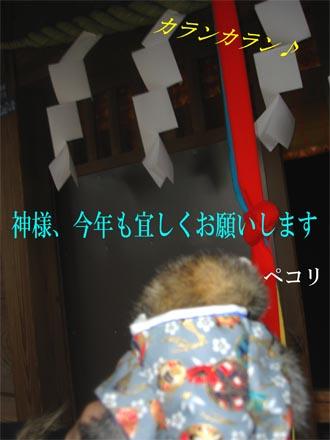 20070106233111.jpg