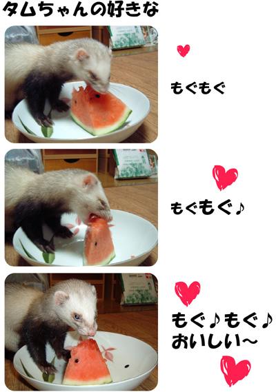 タムスイカを食べる!
