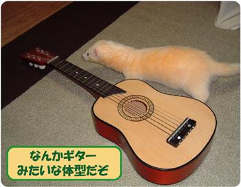 大河とギター