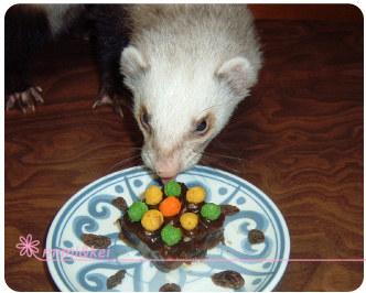 ケーキ食べる多夢