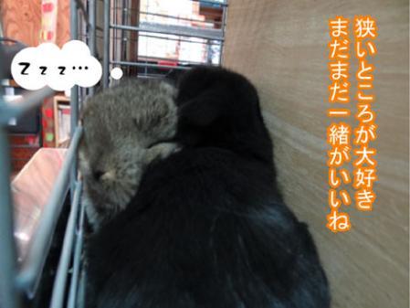 04_20120330180042.jpg