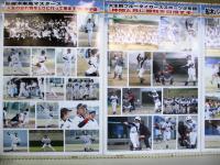 2012.4.2 新居浜市役所ロビー展1