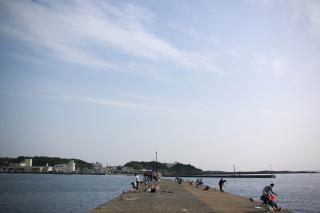 20070527 三崎港