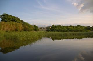 20070601 小松ヶ池