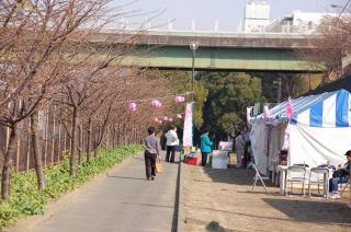 桜 売店 小松ヶ池 20070206