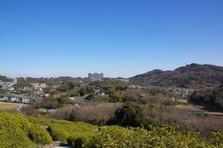 20070320 太田和つつじの丘