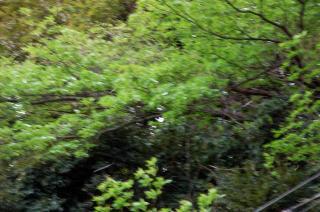 20070404 和田