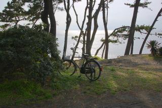 20070406 葉山 一色海岸