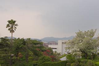 20070413 中央公園