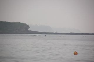 20070626 和田長浜