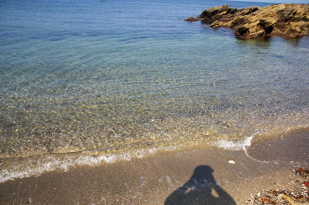 コンクリートの重しがつけられた遺体を三浦市の小網代湾で発見 [転載禁止]©2ch.net [609535295]->画像>15枚