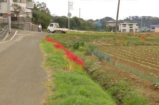 20070924 下宮田