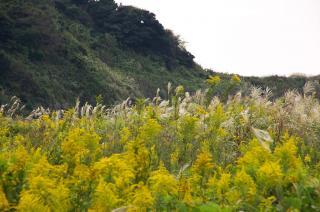 20071013 入江