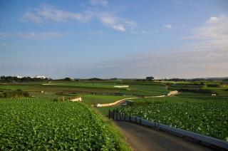 20071031 和田