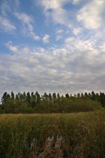 20071031 小松ヶ池