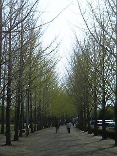06-04-15_14-57.jpg