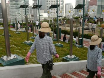 JR大阪駅天空の農園08
