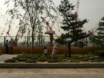 JR大阪駅和らぎの庭05