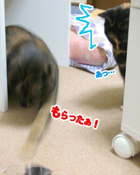 20071031_2.jpg