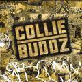Collie Buddz/カリー・バッズ
