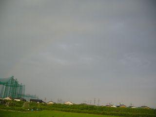 niji_1.jpg