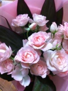 ピンクの薔薇__