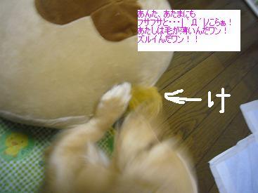 P1020584.jpg
