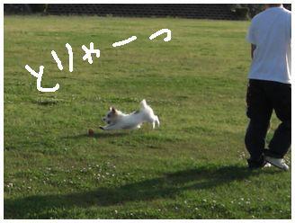 2007_06130028.jpg