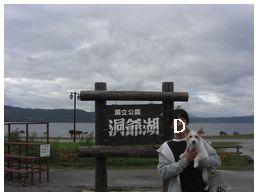 2007_10110017.jpg