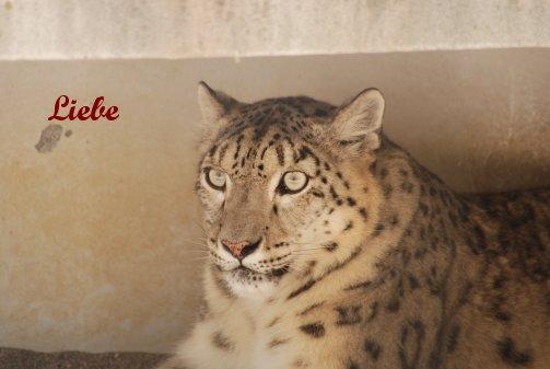 zoo14-17.jpg