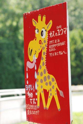 zoo14-29.jpg