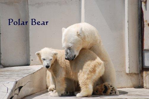 zoo14-39.jpg