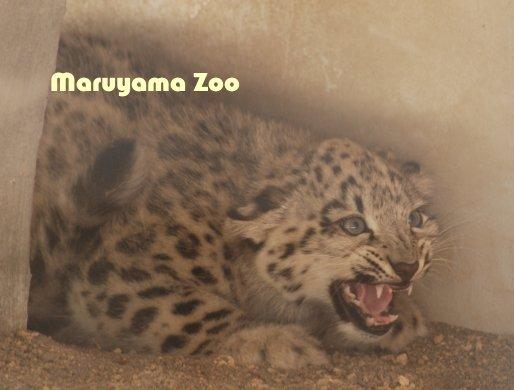 zoo14-8.jpg