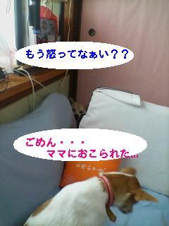 20060826125038.jpg