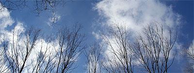 2月12日の空