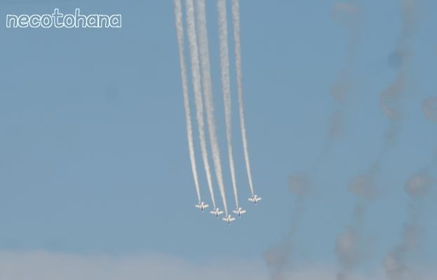 IMG_6799航空祭1