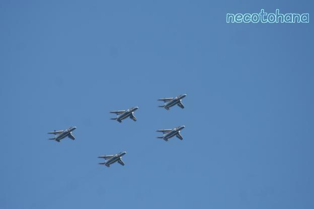 IMG_6802航空祭2