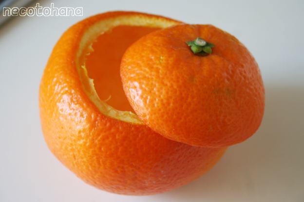 IMG_7717オレンジ3